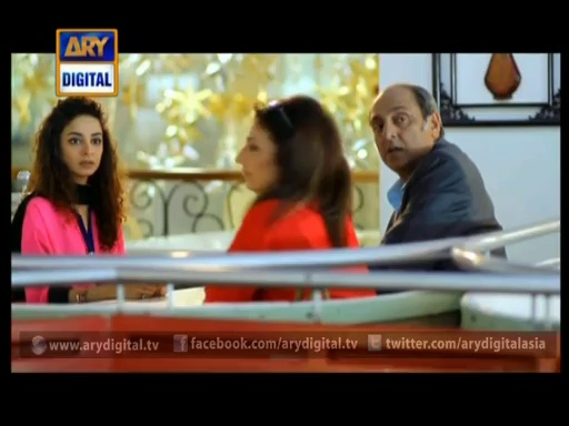 Koi Nahi Apna Ep – 17 – 30th July 2014