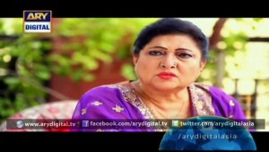 Bewaqoofian Ep – 07 – 31st October 2015
