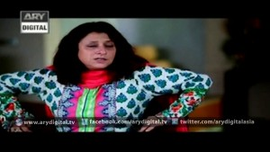 Mere Ajnabi Last Episode – 20th January 2016