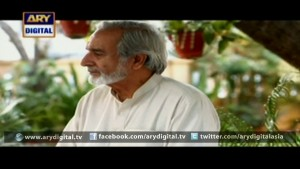 Mohe Piya Rung Laaga Ep – 17 – 22nd February 2016