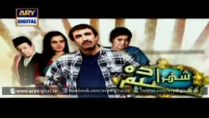 Shehzada Saleem Ep – 07 – 3rd February 2016