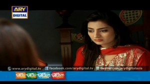 Mohe Piya Rung Laaga Ep – 29 – 14th March 2016