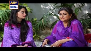 Shehzada Saleem Ep – 48 – 13th April 2016