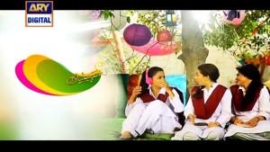 Saheliyaan Ep – 02 – 12th July 2016