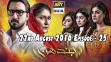 Bandhan Ep – 25 – 22nd August 2016