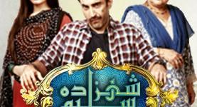Shehzada Saleem