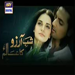 Shab-E-Arzoo Ka Aalam