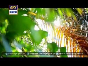 Mujhe Qabul Hai – Last Episode – 19th October 2015