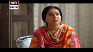 Mein Adhuri – Last Episode – 1st April 2016
