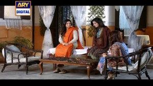 Mohe Piya Rung Laaga Ep – 43 – 6th April 2016