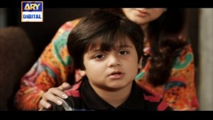 Naraaz Ep – 22 – 5th April 2016