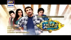 Shehzada Saleem Ep – 46 – 11th April 2016