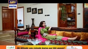 Guriya Rani Ep – 215 – 17th May 2016