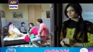 Mohe Piya Rung Laaga Ep – 71 – 17th May 2016