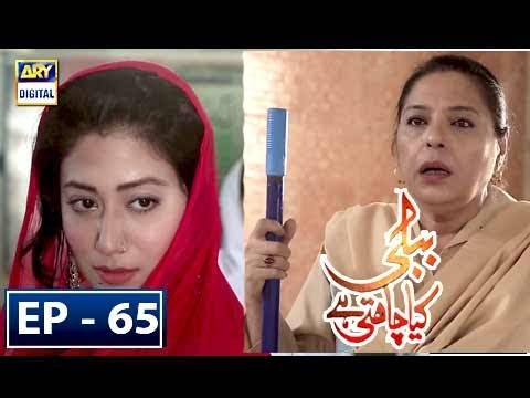 Bubbly Kya Chahti Hai Episode 65