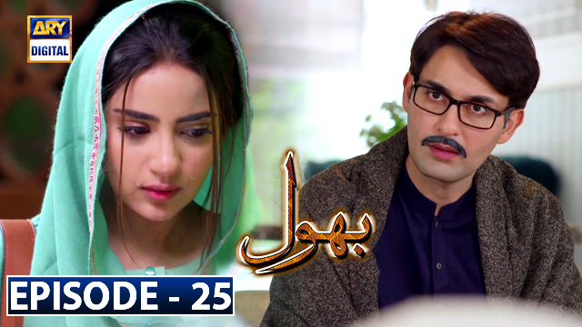Bhool Episode 25