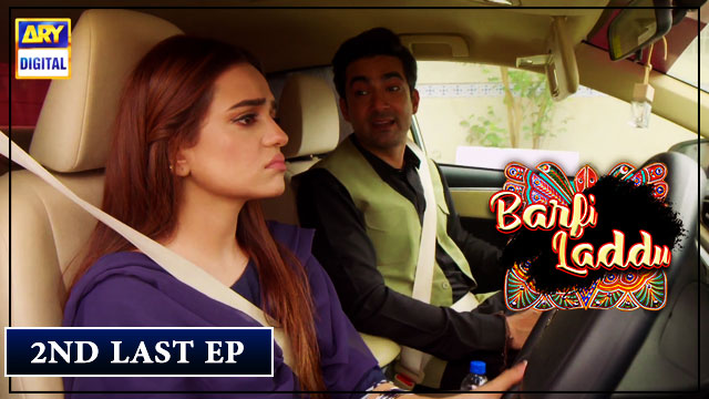 Barfi Laddu Episode 29