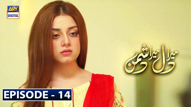 Mera Dil Mera Dushman Episode 14 | 4th March 2020