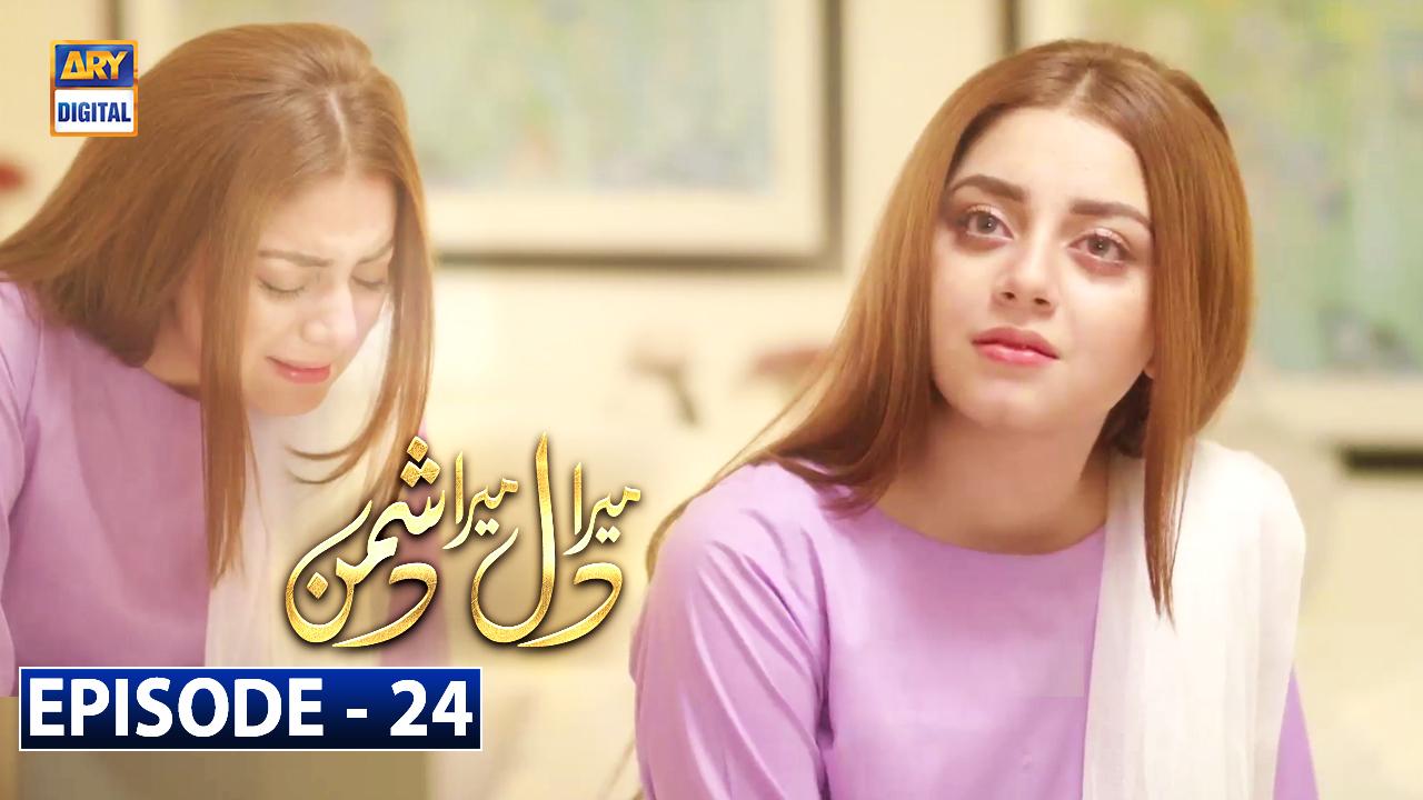 Mera Dil Mera Dushman Episode 24 | 24th March 2020