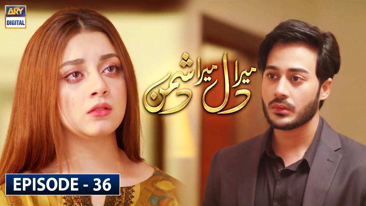 Mera Dil Mera Dushman Episode 36