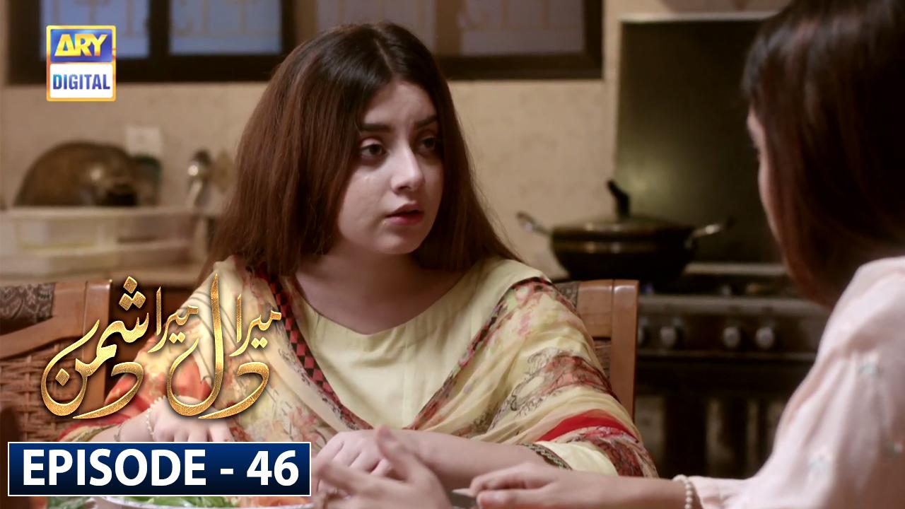 Mera Dil Mera Dushman Episode 46