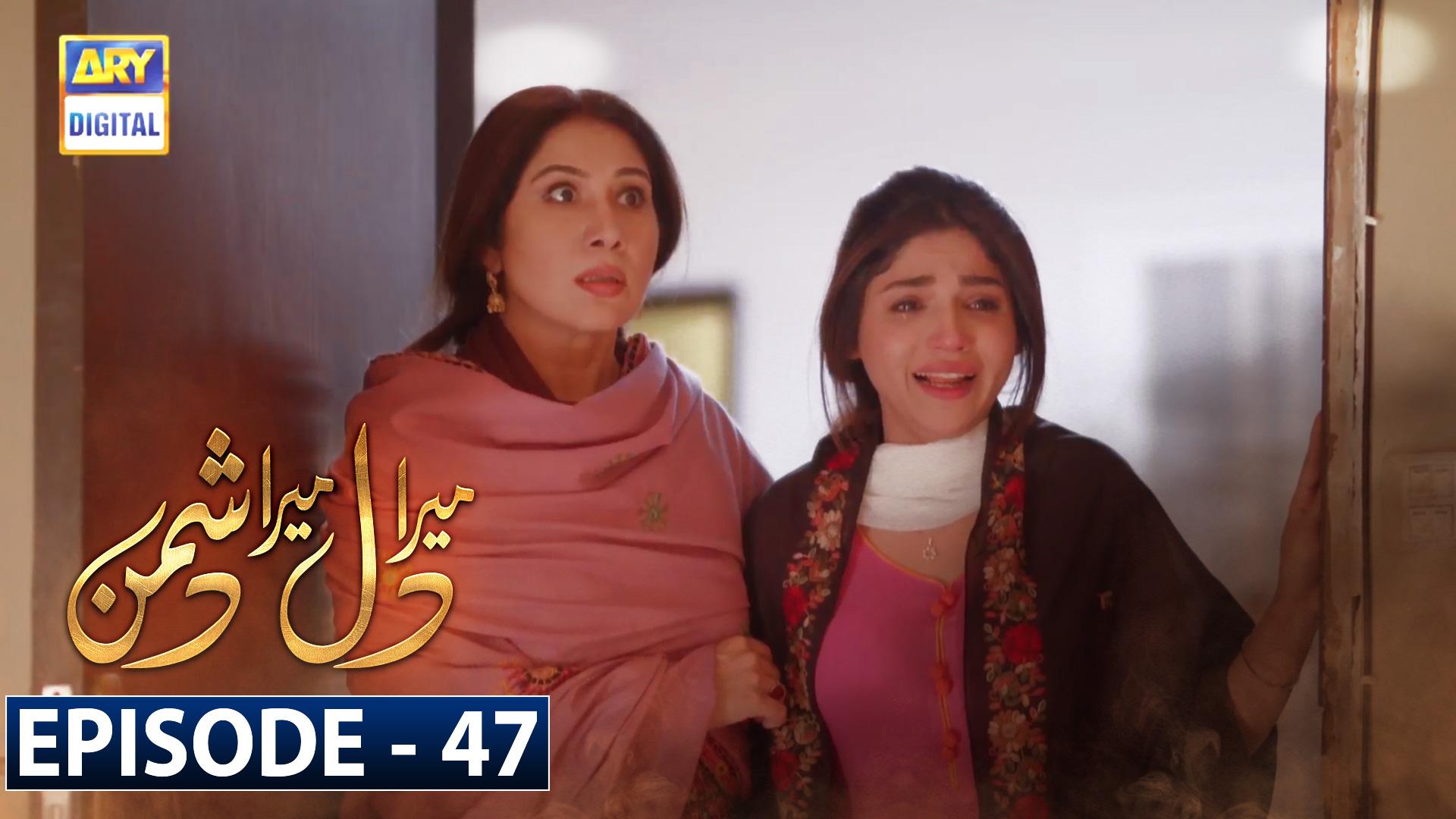 Mera Dil Mera Dushman Episode 47