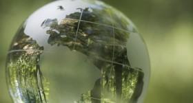 green-globe_site-edit