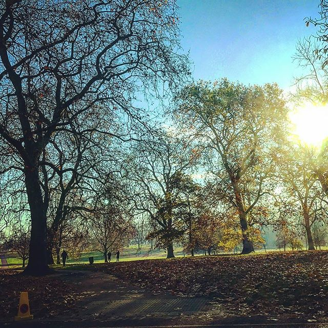 london-cold-sunny-day